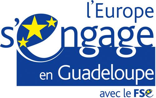 Accueil Conseil Departemental De La Guadeloupe